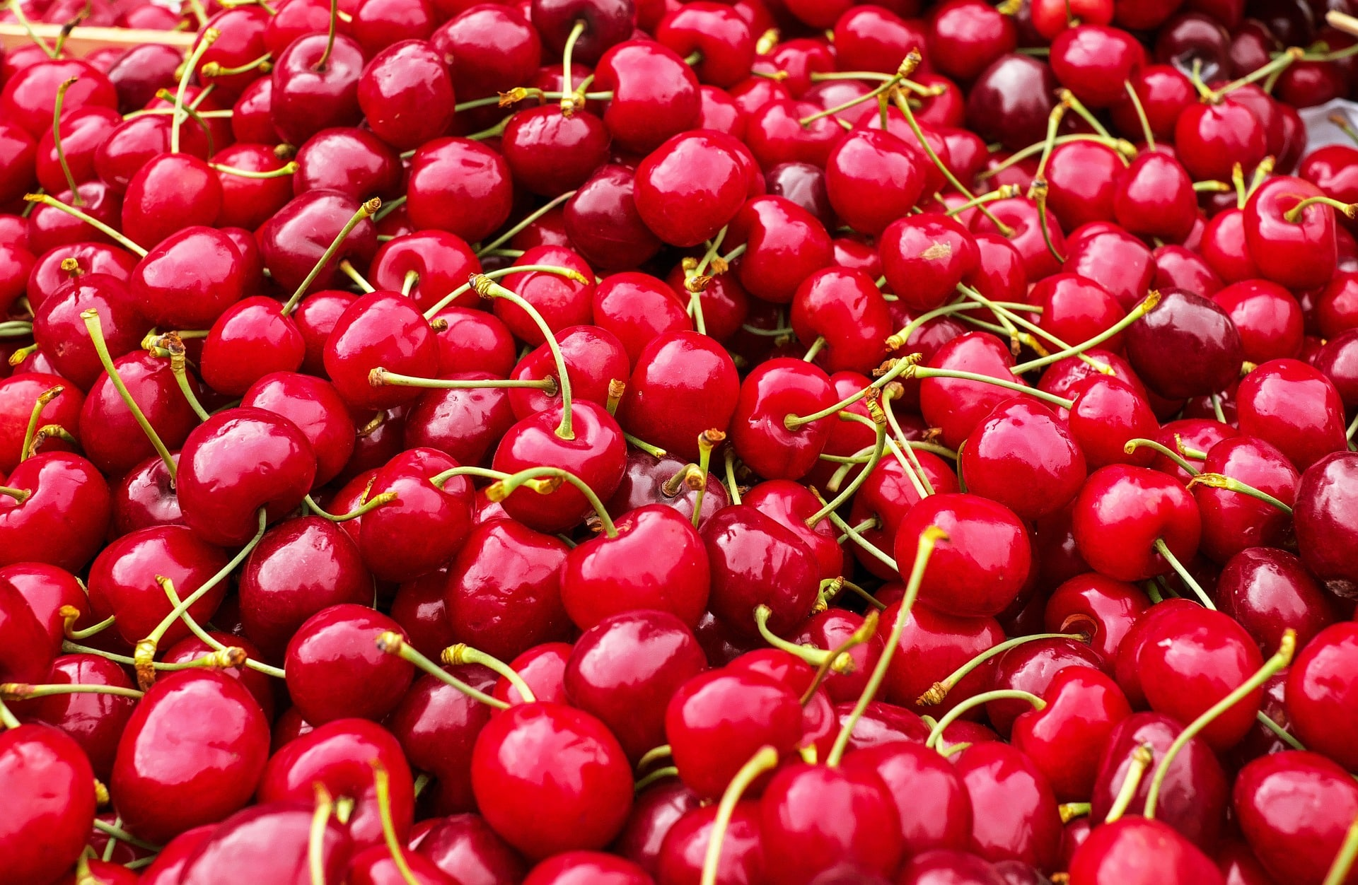 Benefici e proprietà delle ciliegie