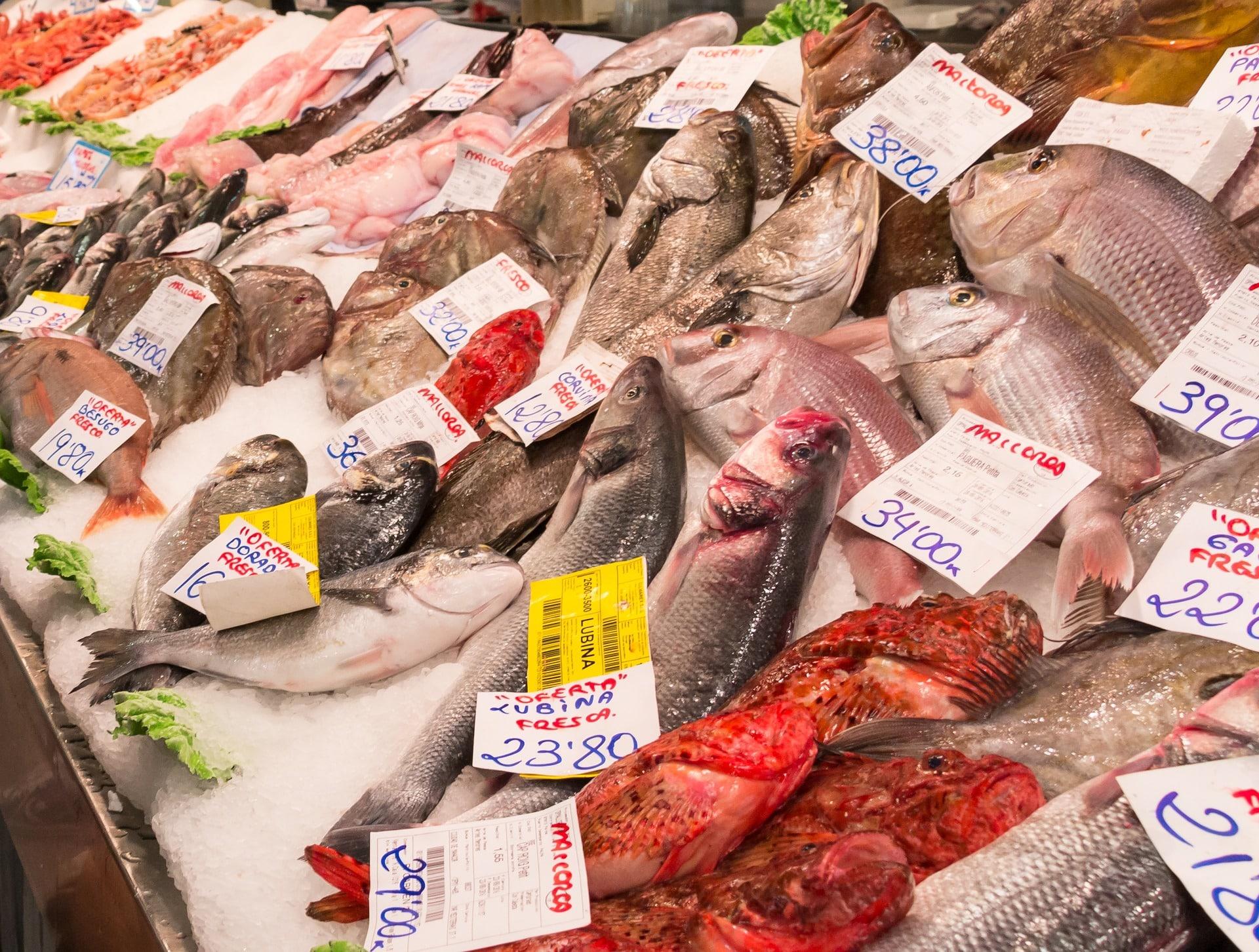 Pesci poveri: ricchezza del nostro paese